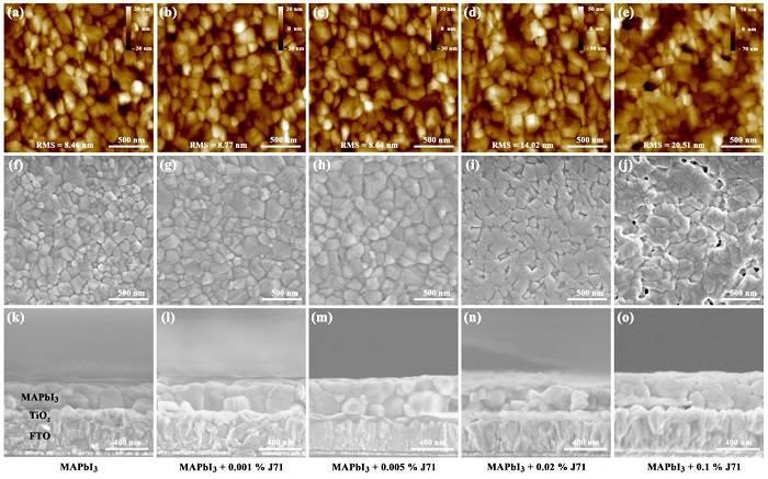 Adv. Energy. Mater. :稳定高效的聚合物掺杂钙钛矿电池