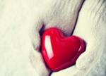 3D打印四年历程:由假想到跳动的心脏