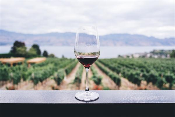 2018年葡萄酒行业七大趋势:AI将取代人力成酒庄新宠