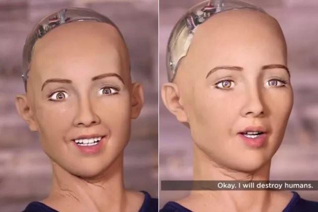 家用机器人:国内外主要玩家及未来方向分析