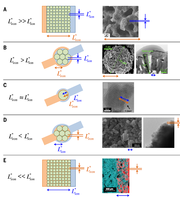 中大朱昌宝&德国马普所Maier Science综述:电池电极的纳米级电路