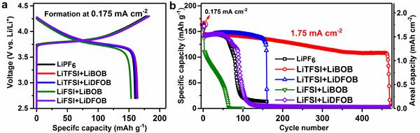 专题报道:Imide-Orthoborate双盐电解质体系抑制锂枝晶及提升锂金属库仑效率的研究