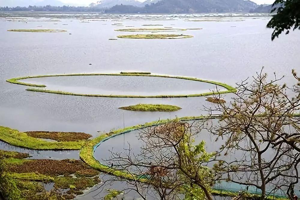 印度禁止在国家公园用LED灯捕鱼