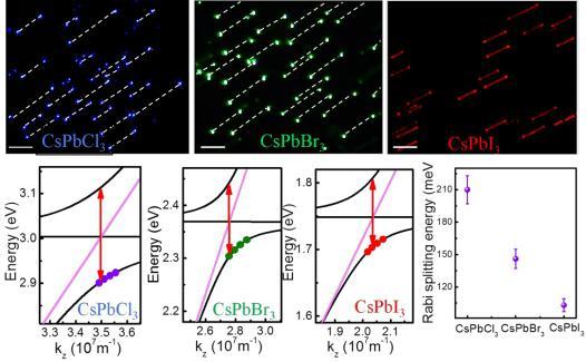 高质量钙钛矿纳米线激光器阵列的构建实现