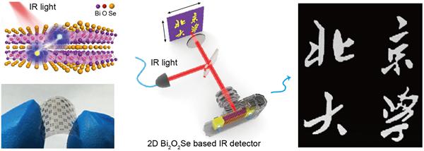 北京大学在二维Bi2O2Se超快高敏红外芯片材料方面取得重要进展