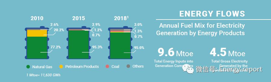 新加坡能源统计2018