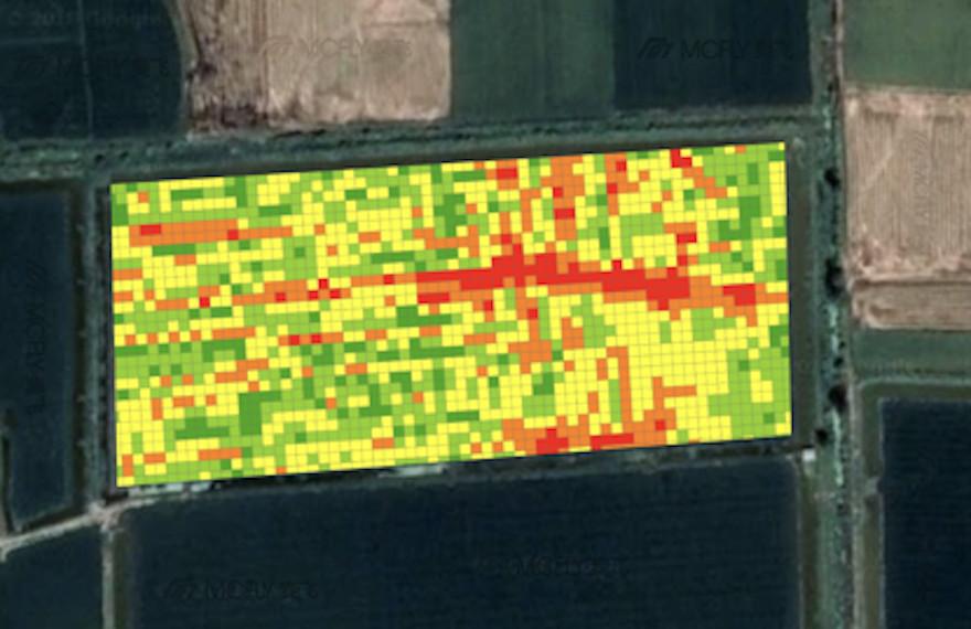 智慧农业大数据服务商麦飞科技获过亿元A轮融资
