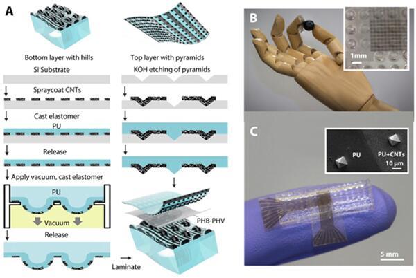 斯坦福大学研发出能够模拟人手感知能力的电子皮肤