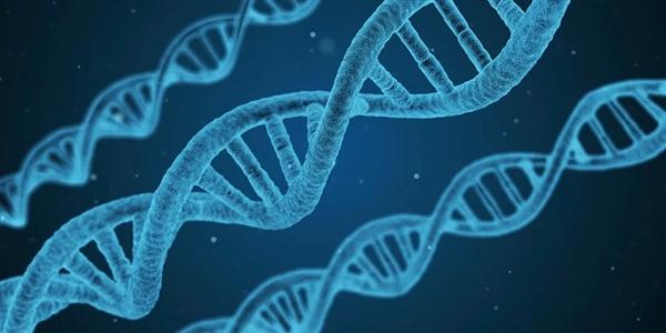 艾滋抗体新方法!合成DNA:克服耐药性