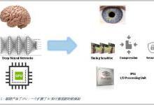 大脑神经网络为AI和ML新算法提供新灵感